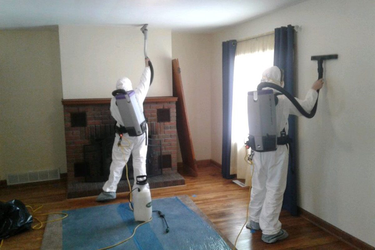 Professional mold removal technicians with backpack vacuums cleaning mold