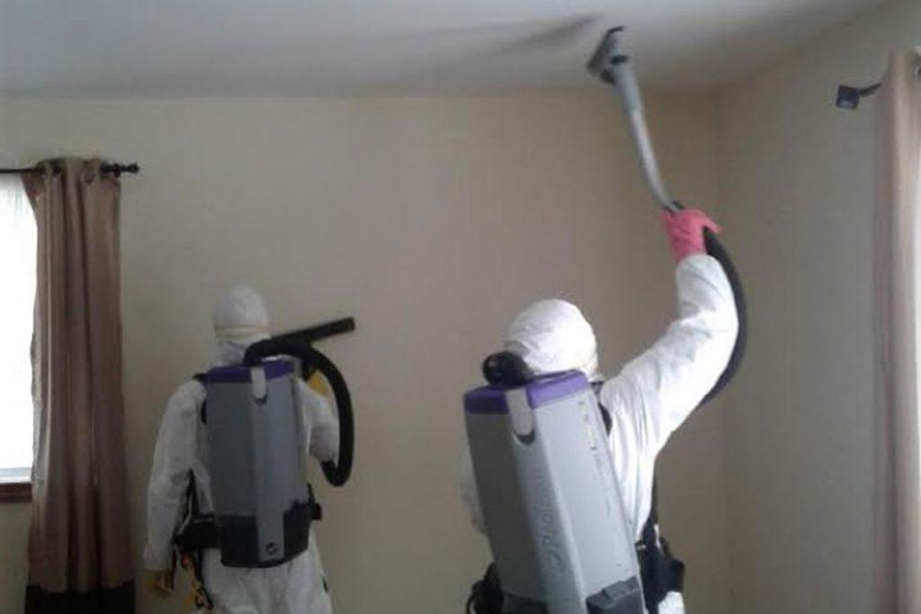mold vacuum ceiling