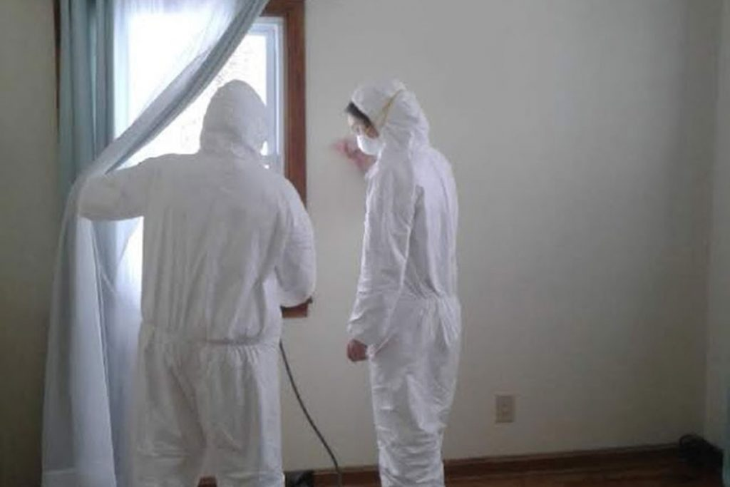 spraying treatment to prevent mold